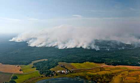 Open fire ban expanded as Sweden swelters