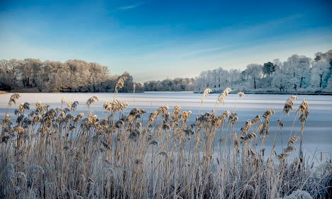 Happy New Year, Sweden – here comes the winter!