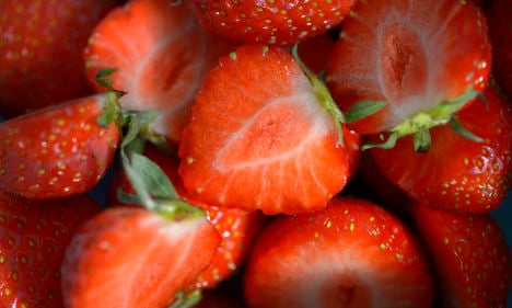 Sweet! Swede cashes in on first strawberry crop
