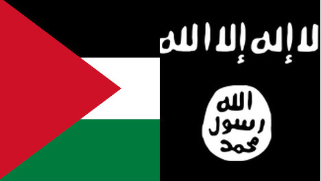 Palestine envoy angry at 'insulting' flag ban