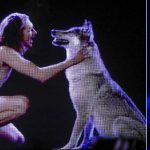 Wolf and nudity? Eurovision host mocks contest's rules