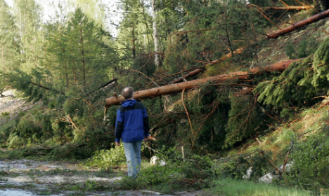 Winds leave thousands of Swedes without power