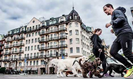 Report: Stockholm is at risk of a housing bubble