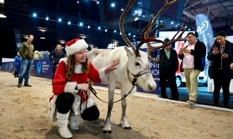 Swede proves you can teach a reindeer new tricks