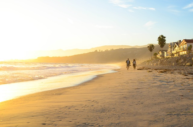 Los Angeles: the ultimate escape from Swedish winter?