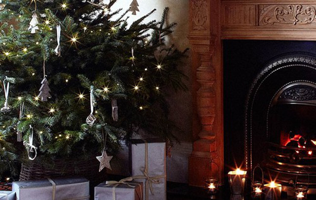 Swedish expert advice: How to pick a perfect Christmas tree