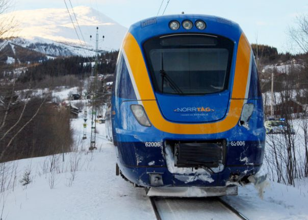 Swedish dog miraculously survives being hit by a train