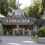 Former Swedish zoo head convicted over fatal wolf attack
