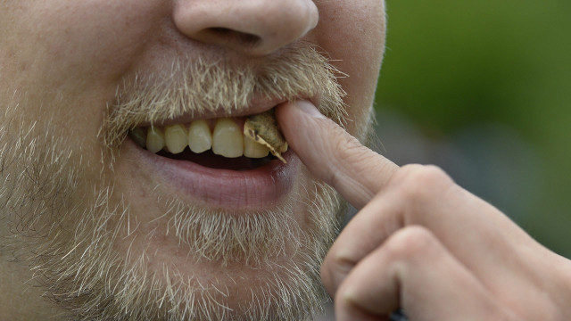 Snus as likely to cause type 2 diabetes as smoking, Swedes warned