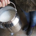 Too much milk will shorten your life, especially if you're a woman: Swedish study