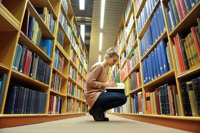 A third of young Swedes have studied abroad: survey