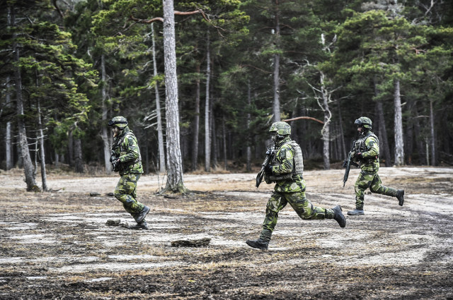 What you need to know about Swedish military service and dual citizenship