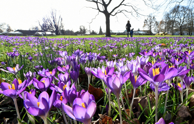 Sweden to bask in warm spring weather this weekend