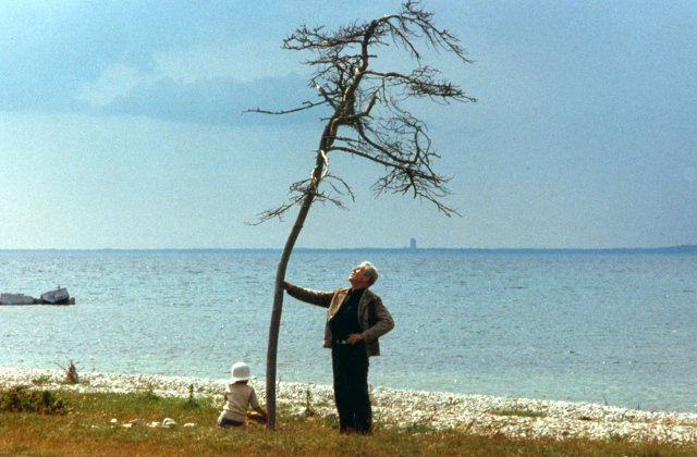 The Local's Swedish film of the month: The Sacrifice