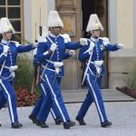 King Carl Gustaf's guards are under attack – from aggressive birds