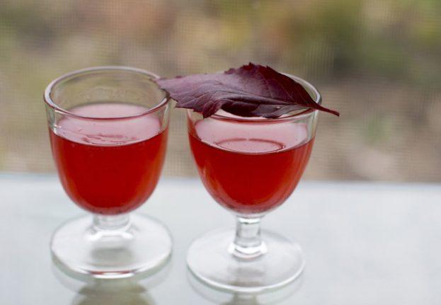 Recipe: How to make this very Swedish summer cocktail