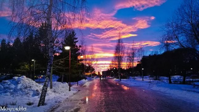 Studying in Umeå: 'It's more than its coldness'