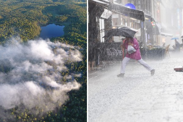 Forest fires and torrential rain: Sweden's summer isn't getting any better