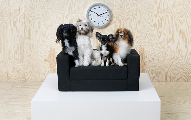 Ikea launches new collection of furniture for pets