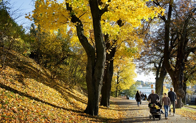 Sweden's Indian summer is coming to an end