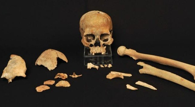 Who were the first Scandinavians? Ancient DNA sheds light on mysterious origins