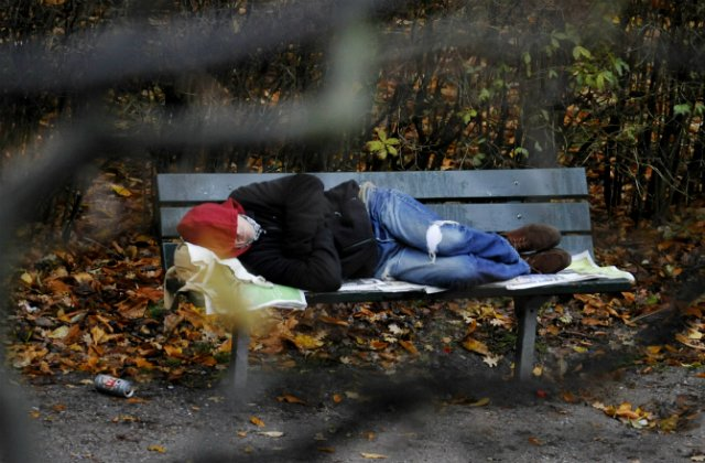 More people in Sweden at risk of poverty: survey