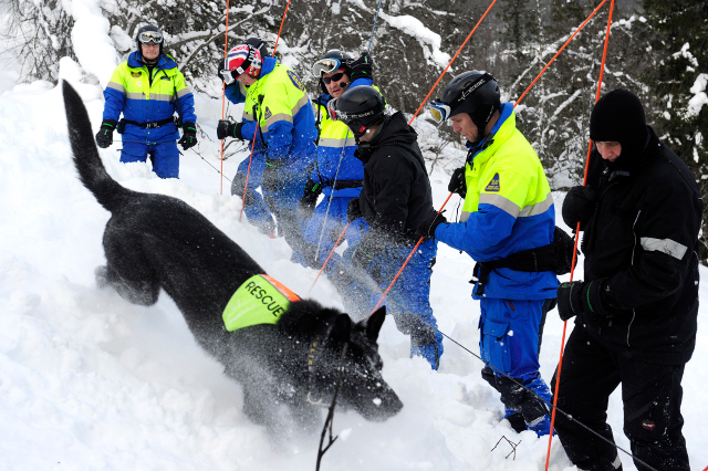 Swedish mountain rescues hit all-time high