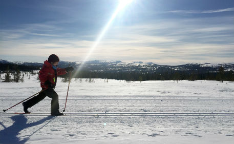 German tourists rescued after mistaking Swedish ski track for road