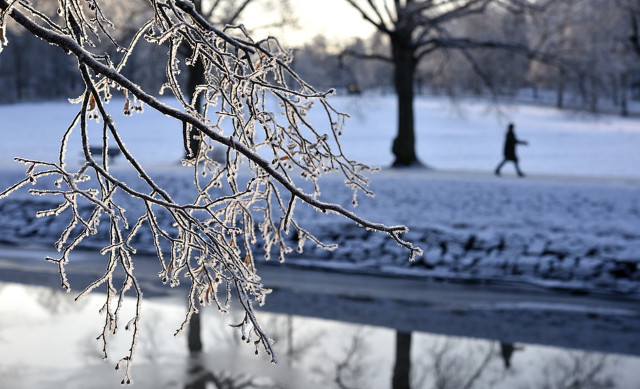 Cold northern air delays arrival of Swedish spring