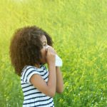 Sweden's most common seasonal allergies (and how to avoid them)