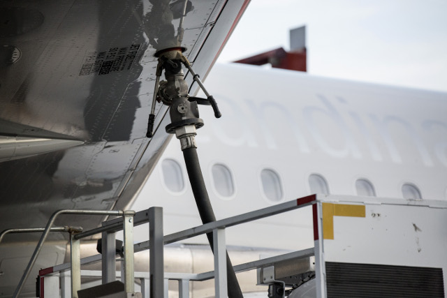 Sweden's forests could fuel air travel, researchers say