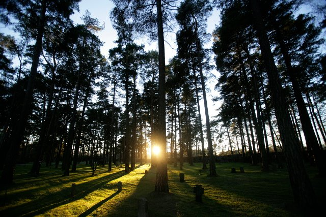The unexpected things cemeteries can teach you about Sweden and its history