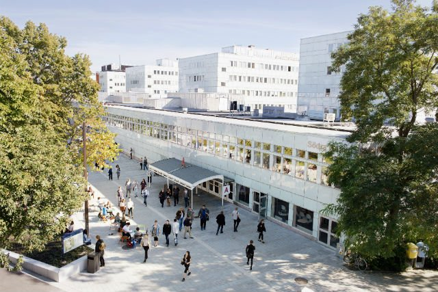 Destination Stockholm: The university attracting top teaching talent