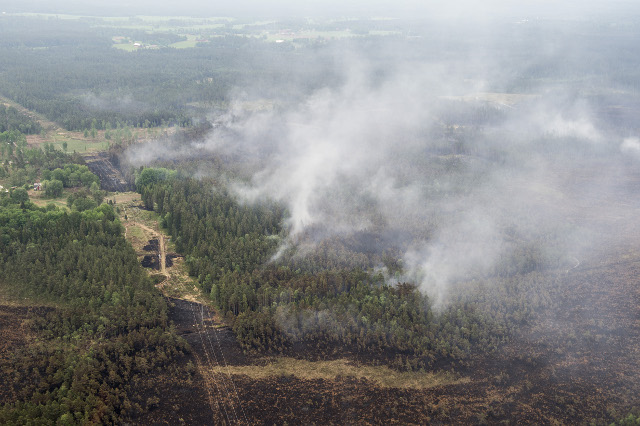 Hot and dry weather creates risk of wildfires across Sweden, weather agency warns