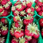 Sweet news for Swedish strawberry fans