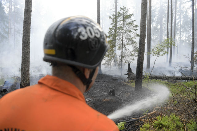 Swedish police arrest woman for starting forest fire