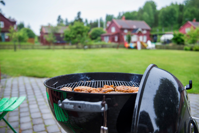 No backyard BBQs: Sweden moves to tighten fire rules