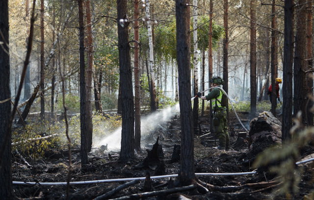 Sweden hit by wildfires and drought as heatwave continues
