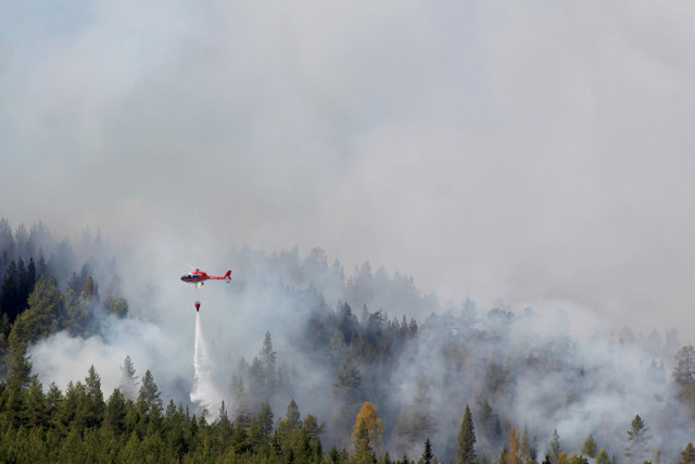 Undetonated ammunition and 'worst possible weather' delays work to extinguish Swedish forest fires