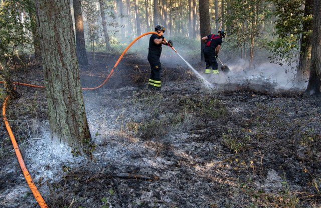Opinion: Sweden's stretched firefighters need more support