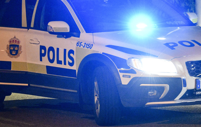 Chinese 'most wanted' man arrested in Sweden