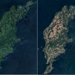 The impact of Sweden's summer heatwave is visible from space