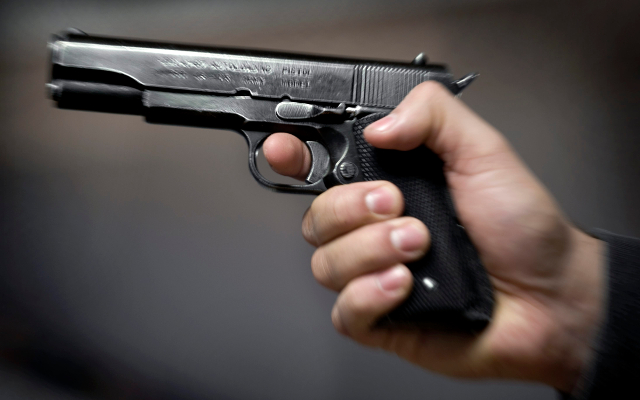 Swede arrested with 19 guns in his suitcase