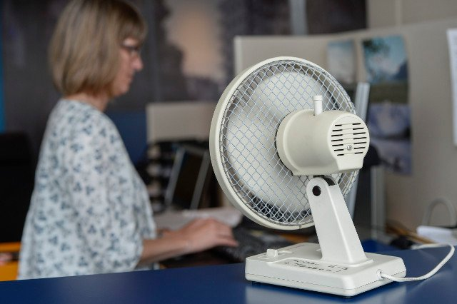 The hunt for the last fan in Sweden: How the heatwave left Swedes sweating