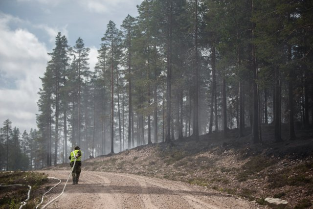 Wildfires and migrants: the issues defining the Swedish election