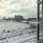 Snow warnings issued in parts of southern Sweden