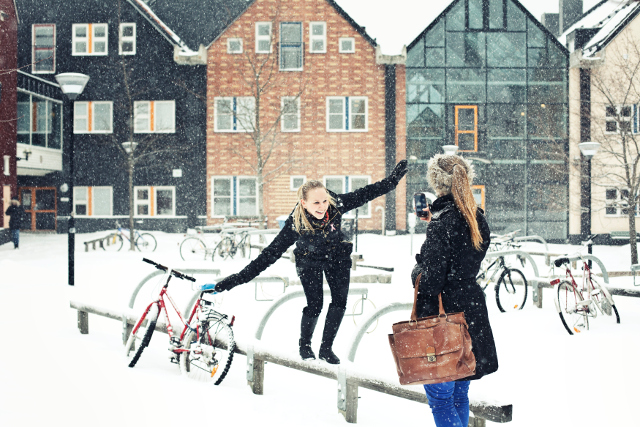 What makes exchange students come back to Sweden?