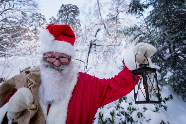 Holiday forecast: Snow may bring white Christmas to Sweden