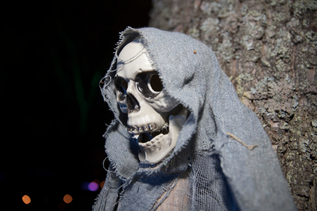 Skeleton found in basement may be from a Swedish war 400 years ago