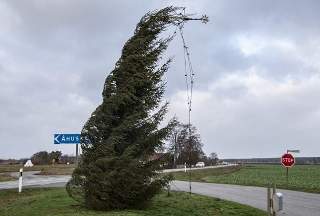Thousands without power and traffic disrupted as 2019's first storm hits Sweden